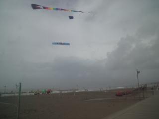 カイトフェスティバル2011ビーチパークで開催中。