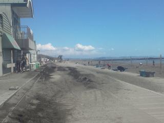 とんでもないところまでゴミや砂が上がっています。
