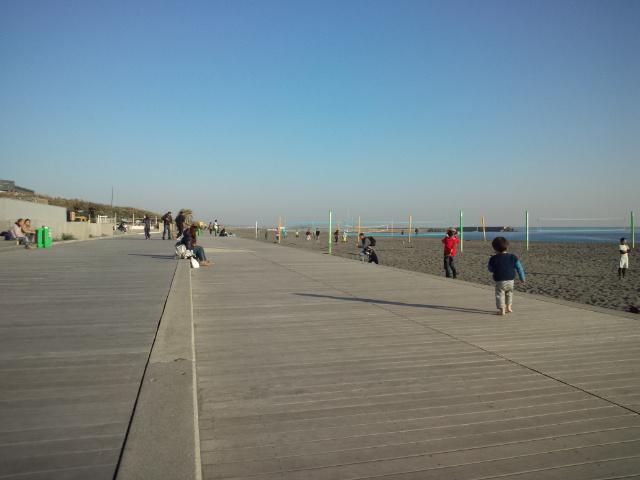 穏やかなビーチパークだなぁ。